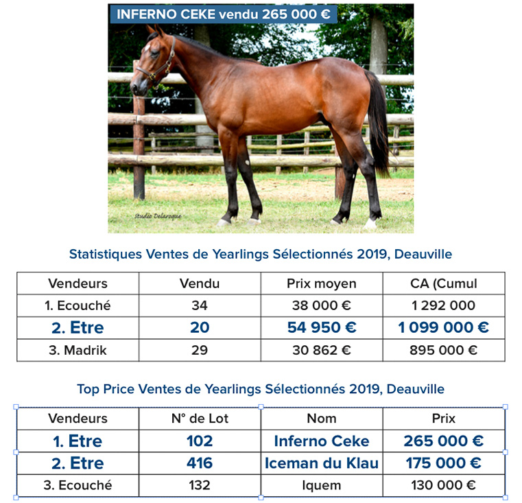 statistiques_vente_yearlings
